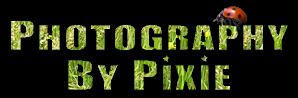 photography by pixies portfolio